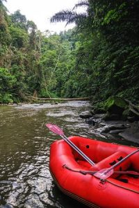 Rafting in Jungle